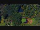 パワースポットの杉池を空撮したら水中に人面魚がっ!!