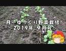月一ゆっくり野菜栽培 2019年9月