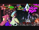 【ポケモンUSM】フラクチ対戦レポート!Ultra Fes Collection Z編【vs夏影】