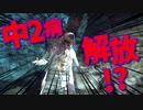 【閲覧注意】厨二病の私が精神ブレイク!【初見実況】part33