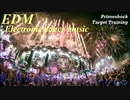【作業用BGM】 Best Of EDM - Electronic Dance Festival Music Mix