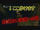 地獄の初見縛り【ダークソウルリマスター】part30
