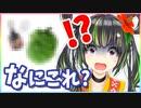 【過去最凶の】沖縄シルエットクイズで阿鼻叫喚!?【罰ゲーム】