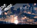 《LIVE風音響》ウォルピスカーター -  夜明けと蛍