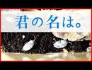 【お迎え報告】エキゾチックレプタイルエキスポに行ってきた!!【ダルメシアンワラジムシ】