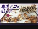 毒キノコをゴキブリに毒見させたら、どうなる・・・?