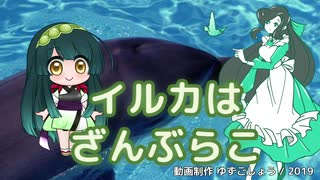 【緑咲香澄・東北ずん子】イルカはざんぶらこ【CeVIO・VOCALOIDカバー】