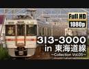 【JR東海】313系3000番台 in 東海道線 ~Collection Vol.05~