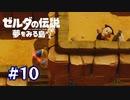山で遭難(有言実行)【ゼルダの伝説 夢をみる島】#10