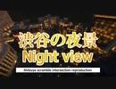 渋谷スクランブル交差点の夜景を1人占めできる - Minecraft