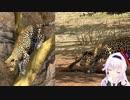アフリカで限界化するカルロ・ピノ