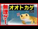 【覚悟が必要】オオトカゲ飼育は無理ゲーです【飼ってみたい】
