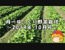 月一ゆっくり野菜栽培 2019年10月