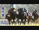 【中央競馬】プロ馬券師よっさんの第80回 菊花賞(GⅠ) さようならMさん