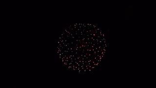 2019.10.19 (熊本) 八代の花火 昇曲付 八重咲の花、昇曲導付三重咲き 侘び寂びの花