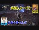 【MHWIB】頬を叩いて壁にドーン!【歴戦斬竜】Part5