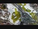 【Apex Legends】ワールドがバグってしまった結果?【PS4】