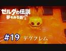 目には目を、火には火を。【ゼルダの伝説 夢をみる島】#19