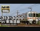 【JR東海】313系3000番台 in 東海道線 ~Collection Vol.06~