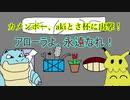 【ポケモンUSUM】カメンボー、akiとさ杯に出撃!【最終回】