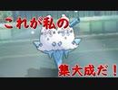 【ポケモンUSUM】これが私の集大成だ!【実況】