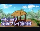 探し人を求めてwitcher3実況プレイ第9回