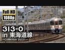 【JR東海】313系0番台 in 東海道線 ~Collection Vol.01~