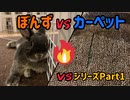 【うさぎ】ぼんずvsカーペット VSシリーズPart1