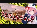 マリカ耐久配信中の笹木、「もうやめよう」コメントにブチギレ台パン発狂