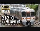 【JR東海】313系0番台 in 東海道線 ~Collection Vol.02~