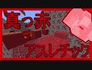 【アスレチック】 一面真っ赤!! カラー統一アスレチック! 【アカアスレ】