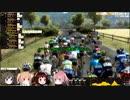 そのゆっくりはツール・ド・フランス2021を走る【PCM2018】 その7