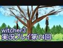 探し人を求めてwitcher3実況プレイ第14回