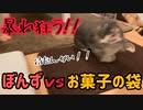【うさぎ】【暴走】ぼんずvsお菓子の袋 VSシリーズPart4