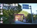 地元地域旅 城峯公園行き冬桜2019 (Googleナビ案内の結果 ※ドラレコ動画)