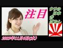 5予告第二回、ウリ招き像、朝日新聞の嘘。桜井誠を応援!菜々子の独り言 2019年11月7日(木)
