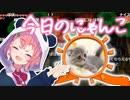 """笹木の飼い猫""""ぽぽ""""、勝手にエコーをかける"""