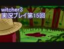 探し人を求めてwitcher3実況プレイ第15回