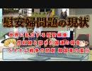 教えて日韓関係シリーズ 慰安婦の現状~3つの事実~ 世界の慰安婦像の数、クマラスワミ報告、ライダイハン