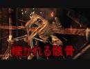 実況【ダークソウル2】貧弱主人公の冒険 パート23