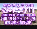 2019年11月16日「多摩川」台風19号から1ヵ月後の被害&復旧状況
