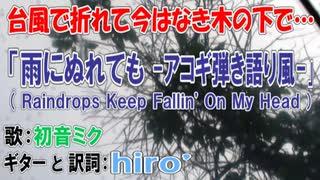 【台風で折れた!?】初音ミク「雨にぬれても」日本語詞アコギ弾き語り風カバー【木の下で】