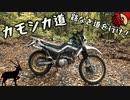 【VOICEROID車載】 カモシカ道 初めての林道(三回目)編