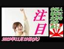 14-A 桜井誠、オレンジラジオ ぶり返し ~菜々子の独り言 2019年11月18日(月)