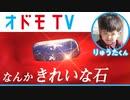 [オドモTV] サメを蹴ってできた石が5万8888兆円? | オドモCM | NHK