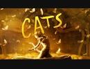 映画『Cats/キャッツ』予告編 #2
