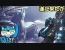 【MHW:IB】マイペースハンター、遂にイヴェルカーナと対戦#12