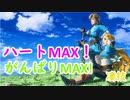 【ゼルダの伝説BotW】ハート&がんばりMAX技!