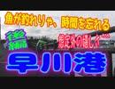 釣り動画ロマンを求めて 303釣目 後編(早川港)
