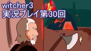 探し人を求めてwitcher3実況プレイ第30回